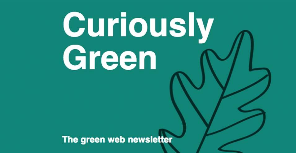 Green newslettter